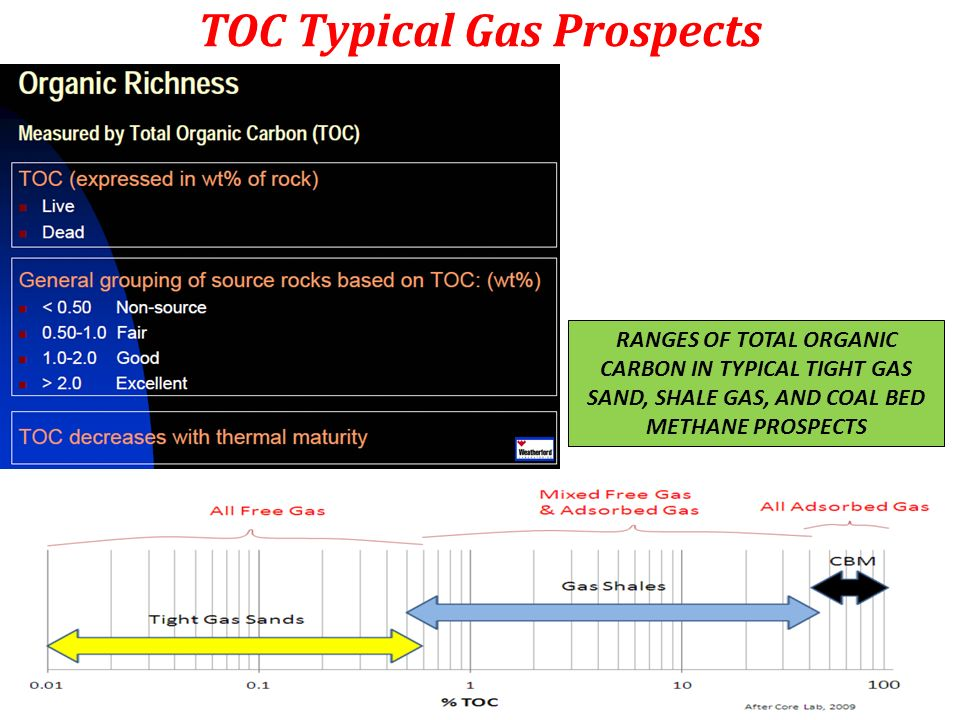 TOC Typical Gas Prospects