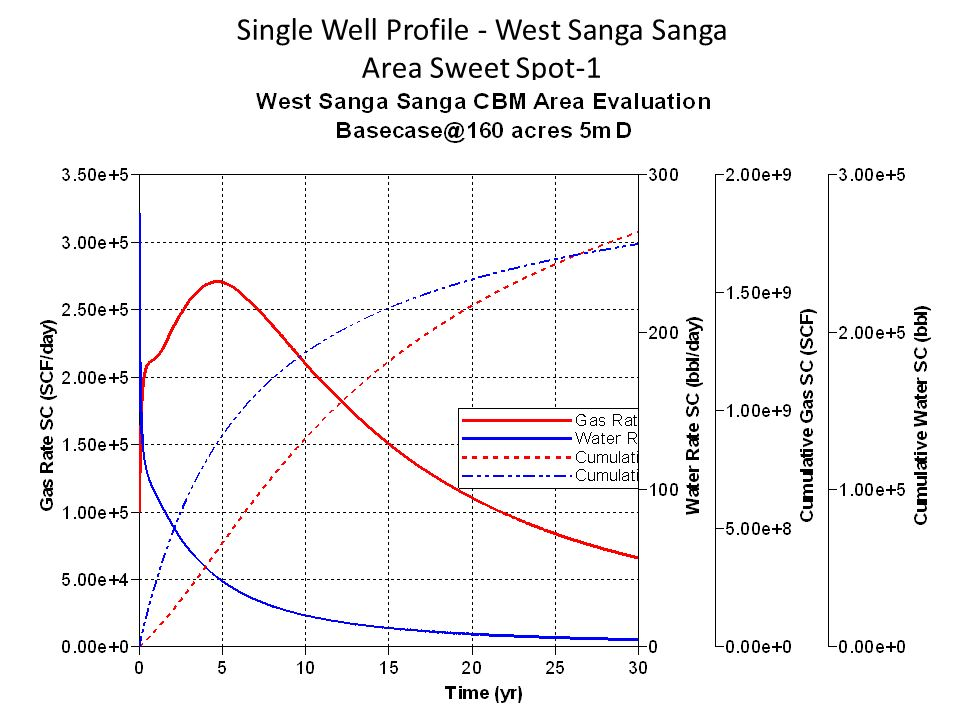 Single Well Profile - West Sanga Sanga Area Sweet Spot-1