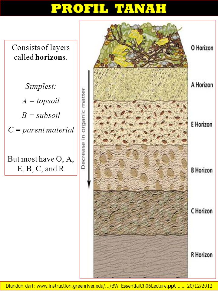 PROFIL TANAH Consists of layers called horizons. Simplest: A = topsoil