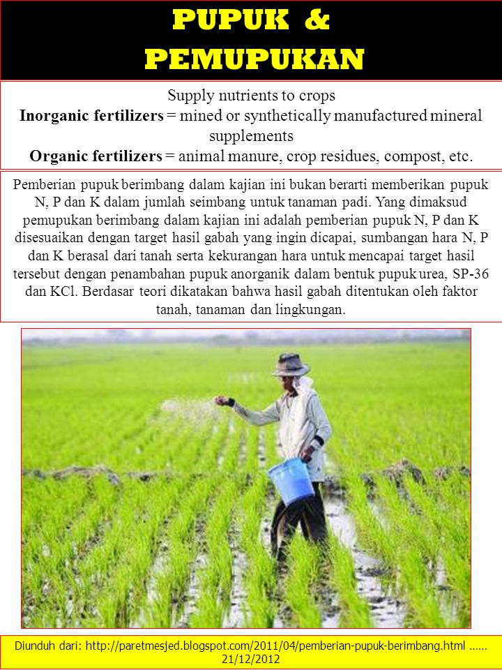 PUPUK & PEMUPUKAN Supply nutrients to crops