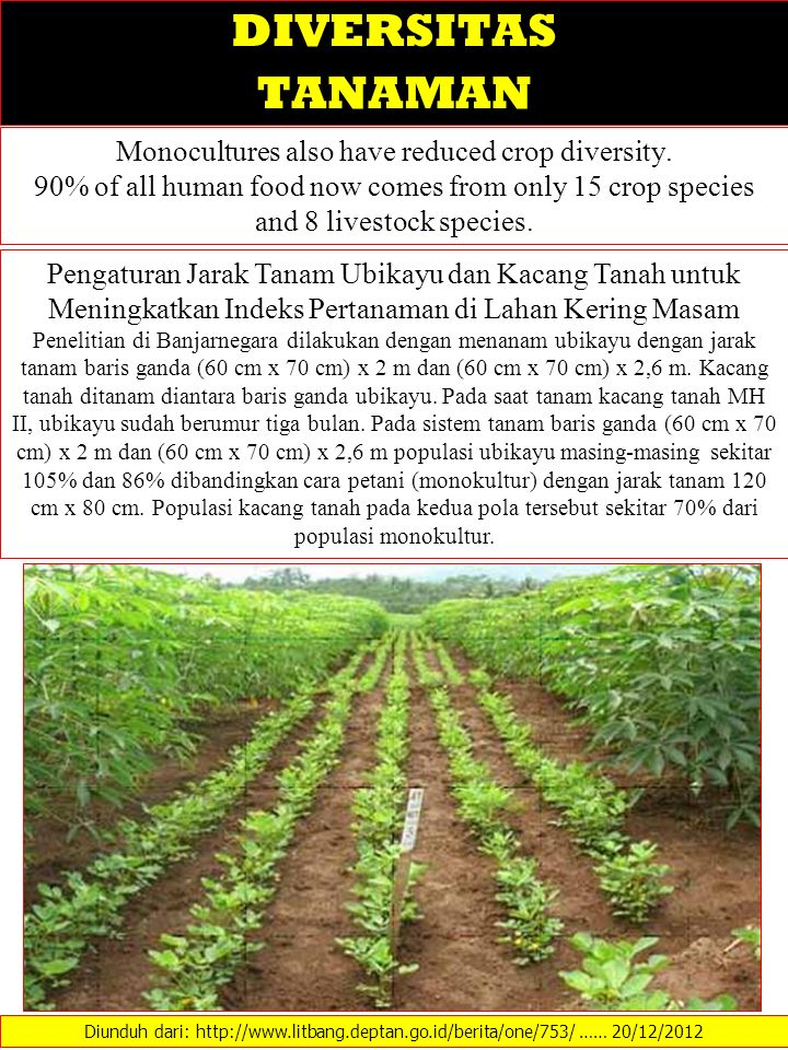 Monocultures also have reduced crop diversity.