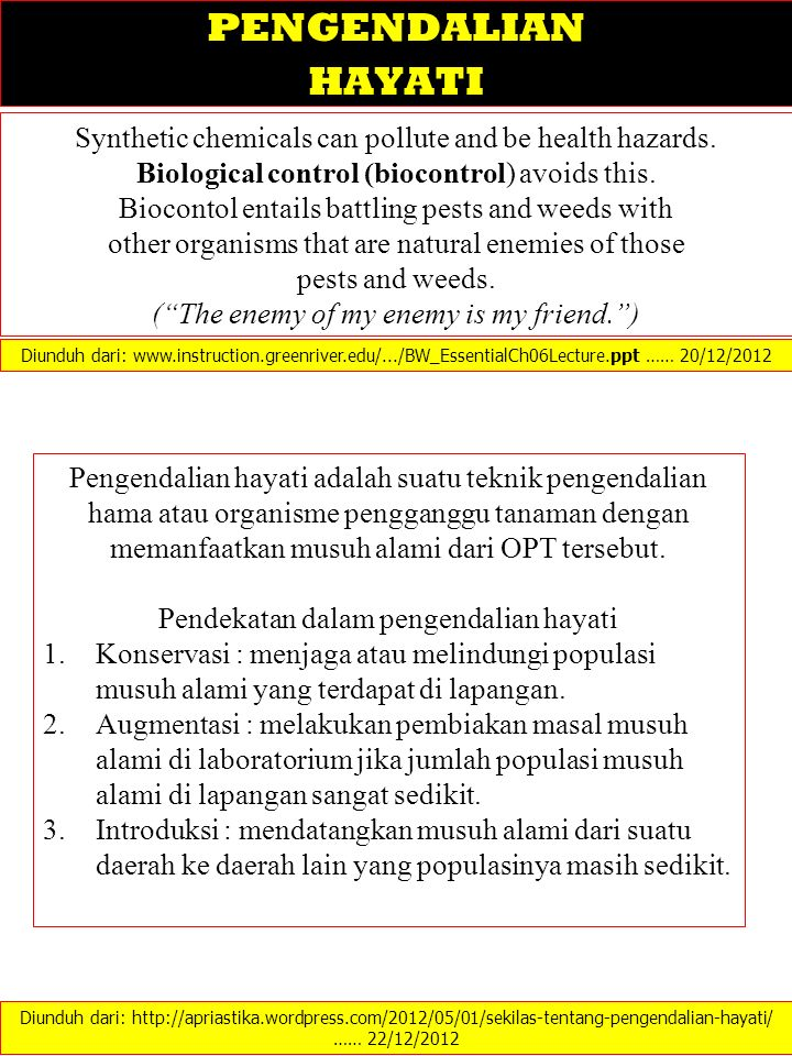 PENGENDALIAN HAYATI. Synthetic chemicals can pollute and be health hazards. Biological control (biocontrol) avoids this.
