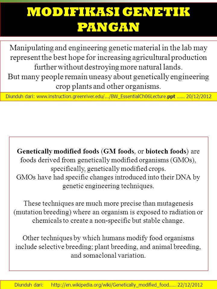 MODIFIKASI GENETIK PANGAN