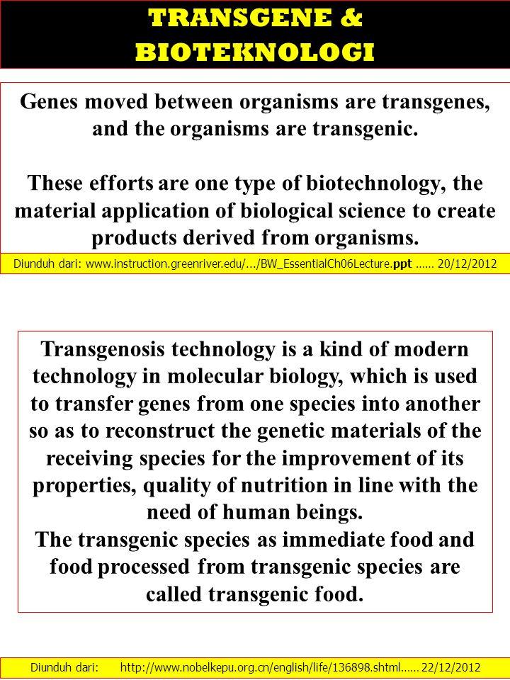 TRANSGENE & BIOTEKNOLOGI