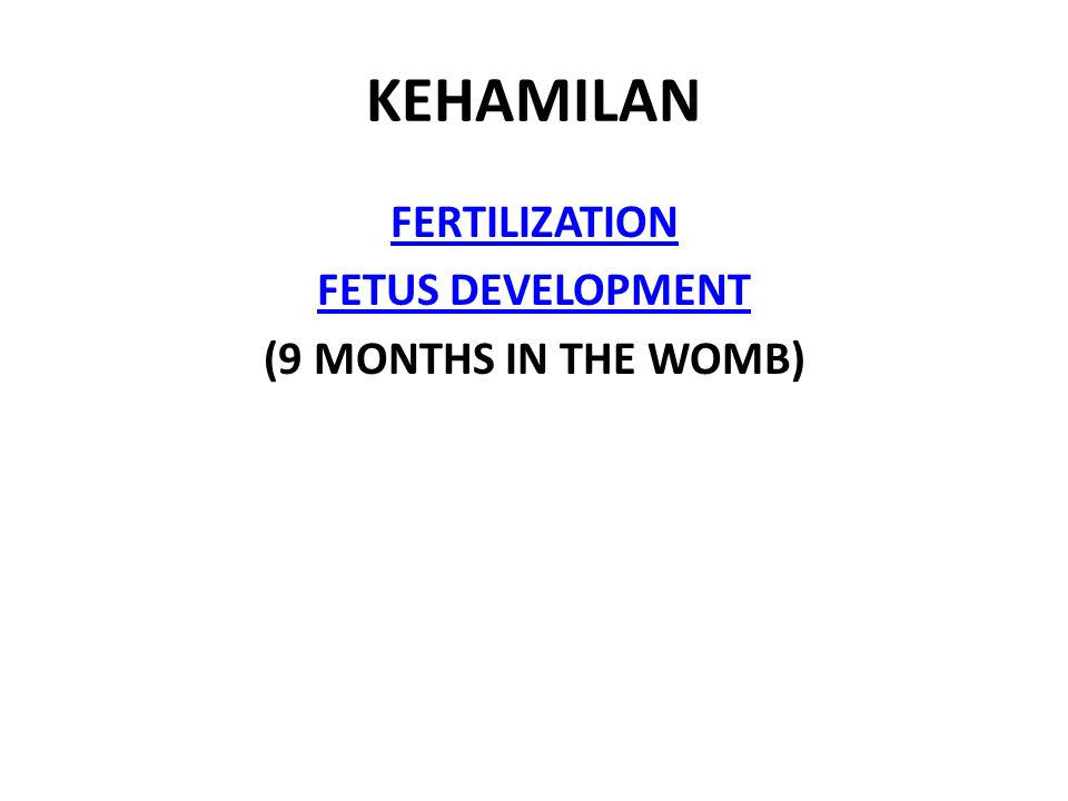 FERTILIZATION FETUS DEVELOPMENT (9 MONTHS IN THE WOMB)