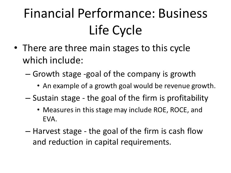 Financial Performance: Business Life Cycle