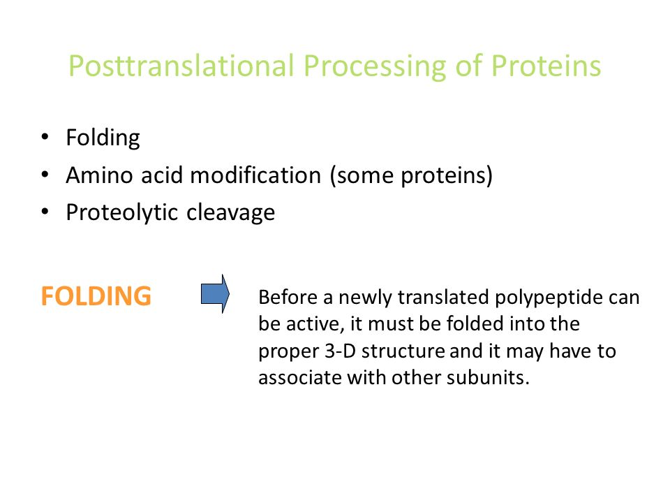 Posttranslational Processing of Proteins