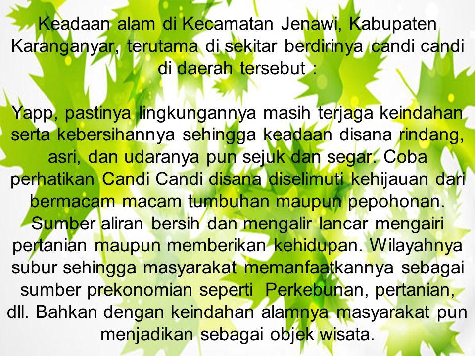 Keadaan alam di Kecamatan Jenawi, Kabupaten Karanganyar, terutama di sekitar berdirinya candi candi di daerah tersebut : Yapp, pastinya lingkungannya masih terjaga keindahan serta kebersihannya sehingga keadaan disana rindang, asri, dan udaranya pun sejuk dan segar.