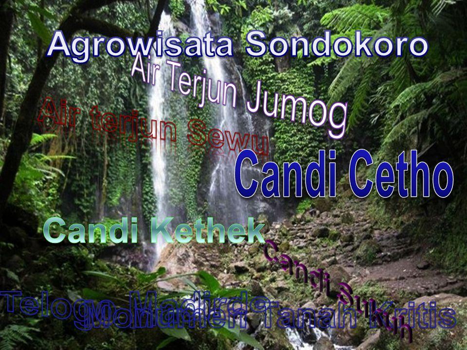 Agrowisata Sondokoro Air Terjun Jumog. Air terjun Sewu. Candi Cetho. Candi Kethek. Candi Sukuh.