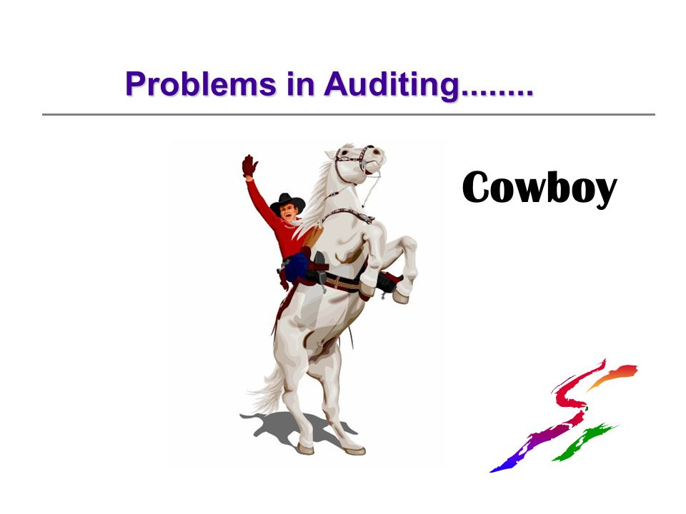Problems in Auditing........ Cowboy