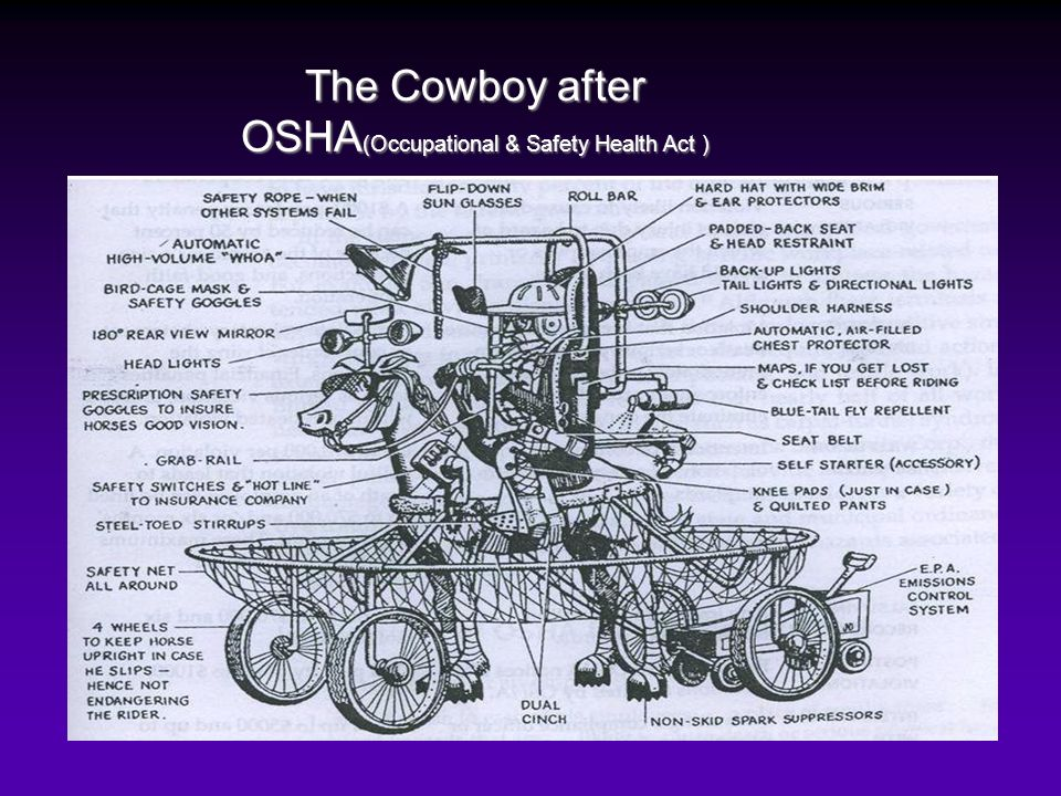 The Cowboy after OSHA(Occupational & Safety Health Act )