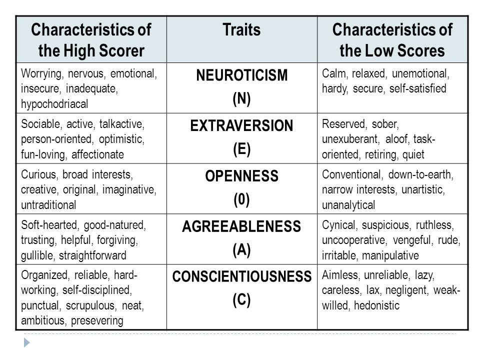 Characteristics of the High Scorer Characteristics of the Low Scores