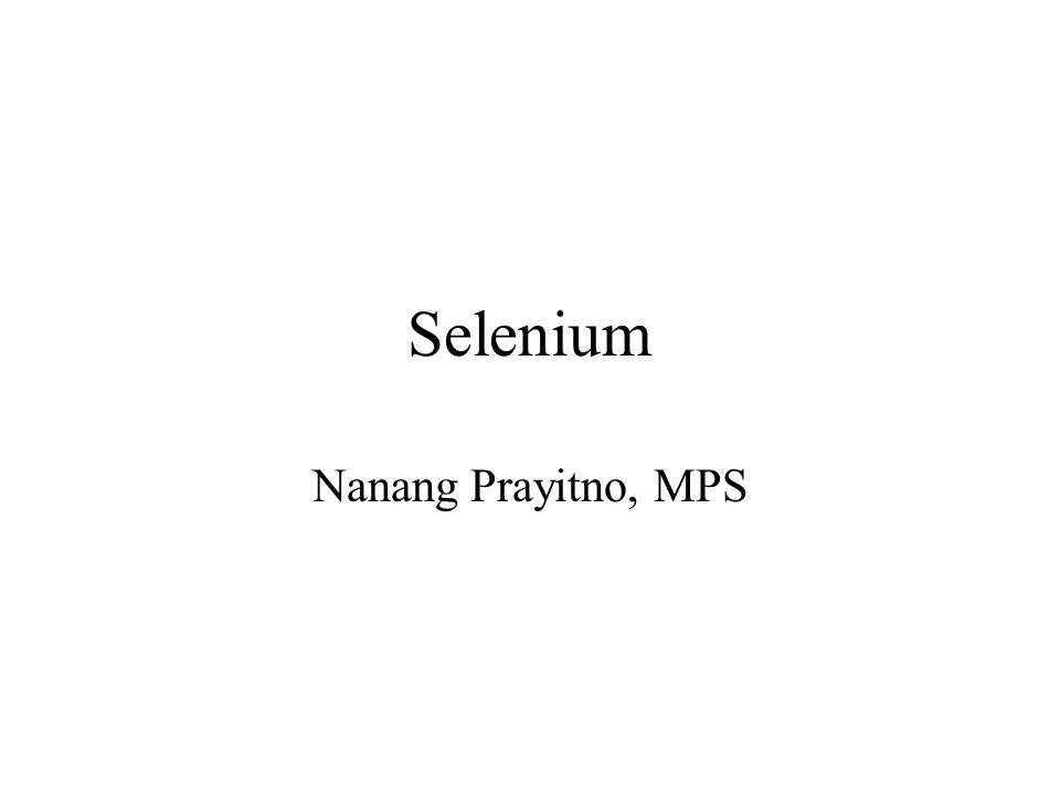 Selenium Nanang Prayitno, MPS
