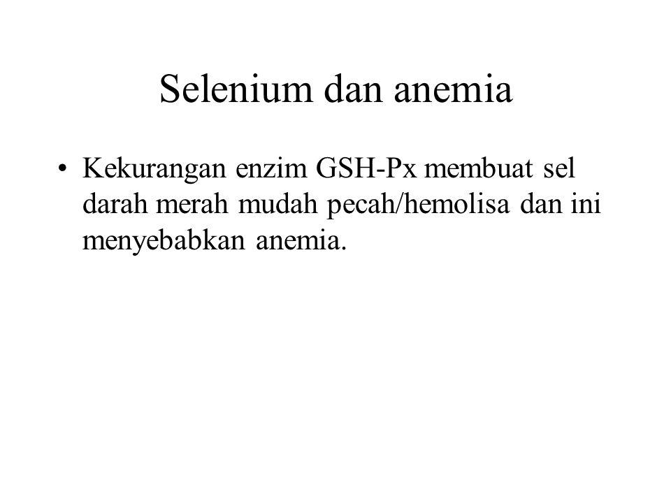 Selenium dan anemia Kekurangan enzim GSH-Px membuat sel darah merah mudah pecah/hemolisa dan ini menyebabkan anemia.