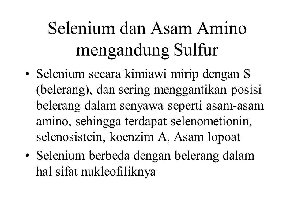 Selenium dan Asam Amino mengandung Sulfur