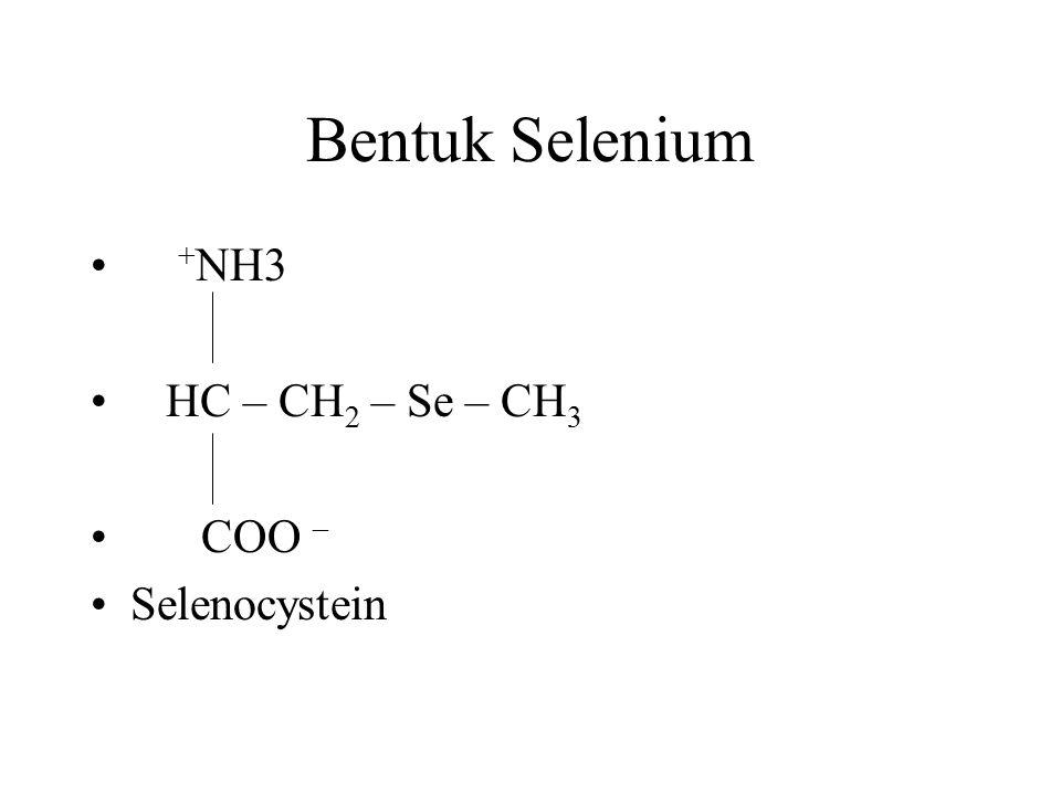Bentuk Selenium +NH3 HC – CH2 – Se – CH3 COO – Selenocystein