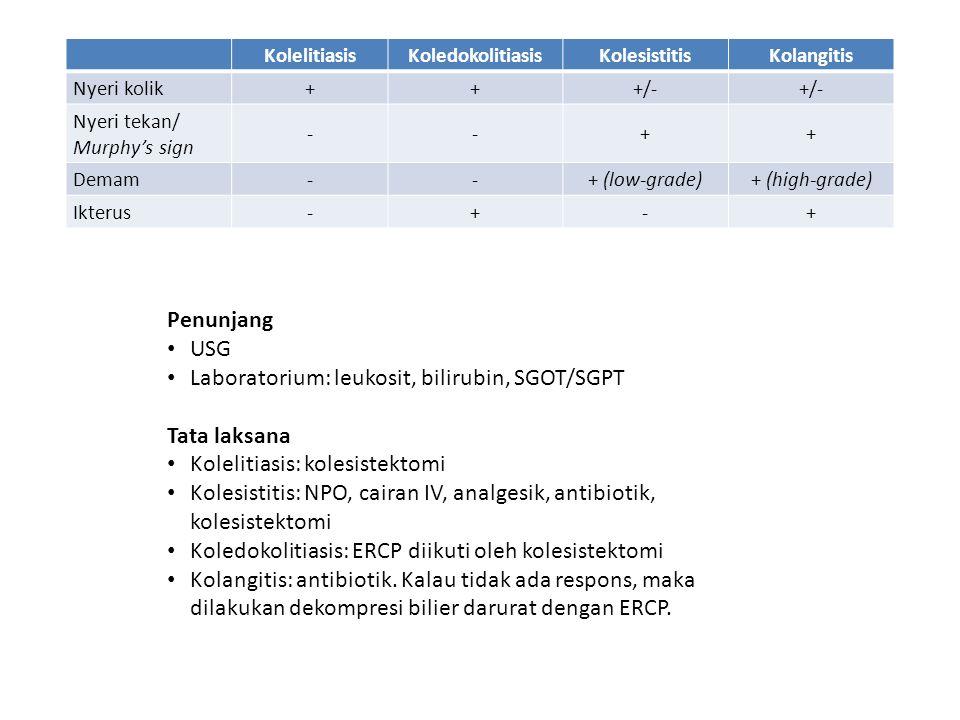 Laboratorium: leukosit, bilirubin, SGOT/SGPT Tata laksana