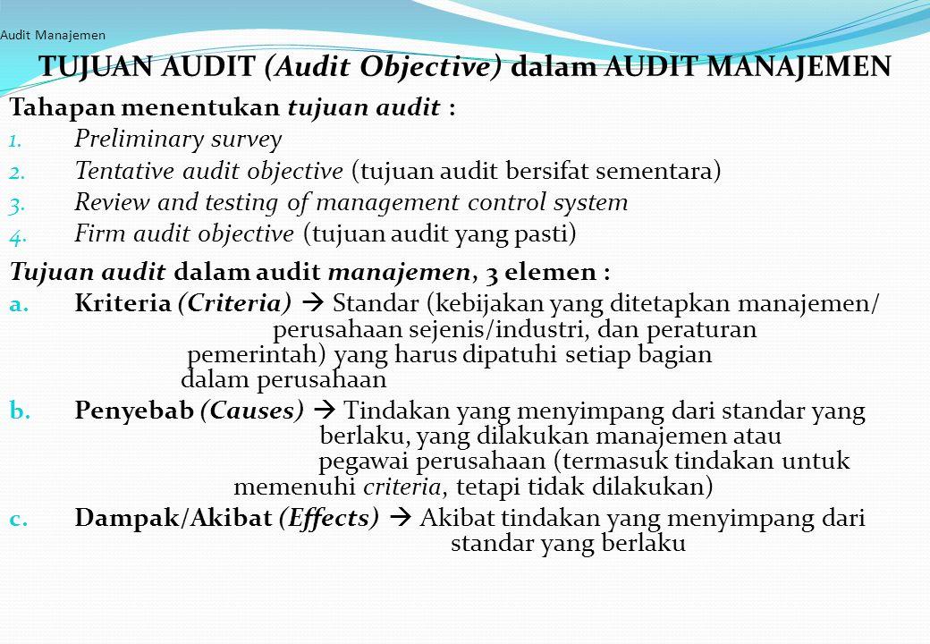 TUJUAN AUDIT (Audit Objective) dalam AUDIT MANAJEMEN