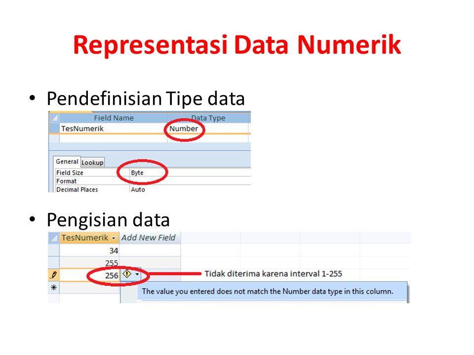 Representasi Data Numerik