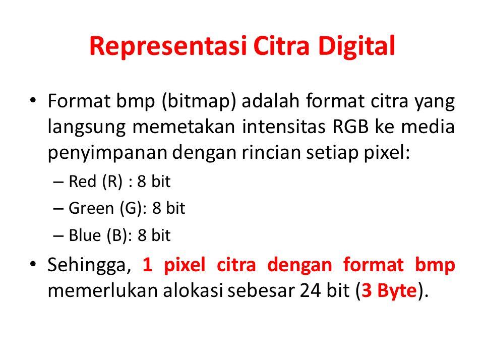 Representasi Citra Digital