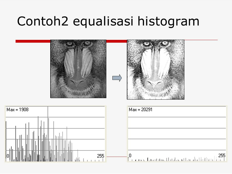 Contoh2 equalisasi histogram