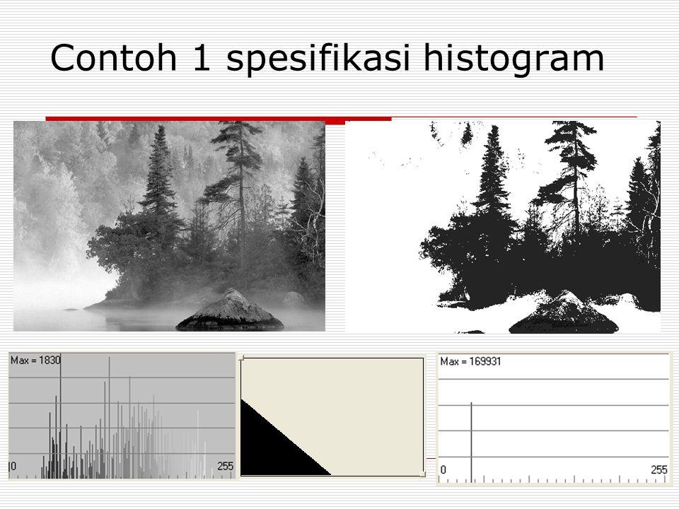 Contoh 1 spesifikasi histogram