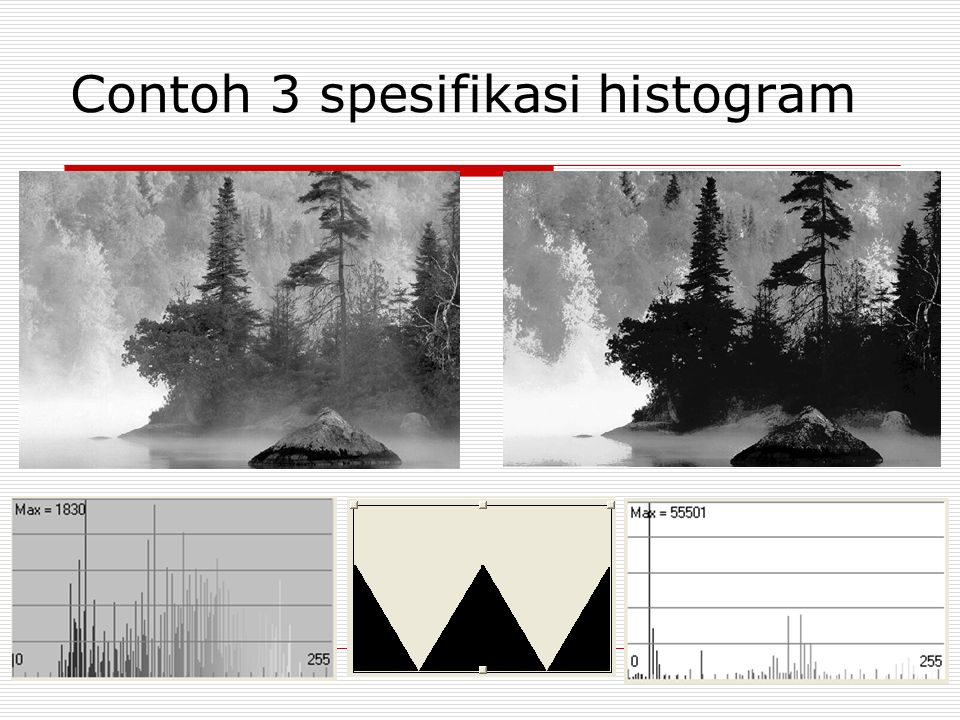Contoh 3 spesifikasi histogram