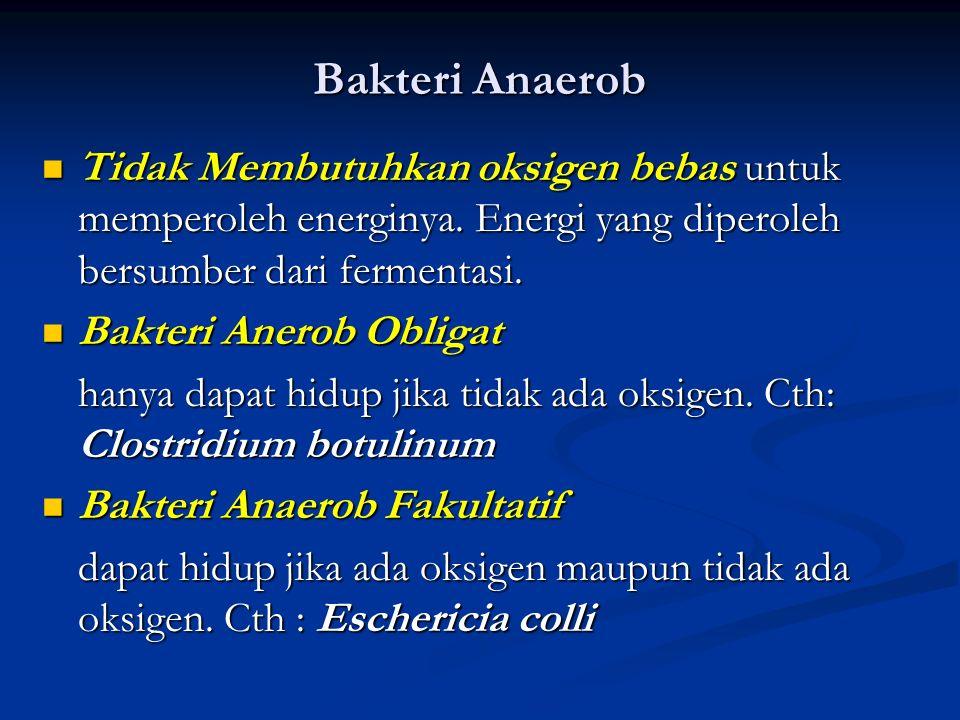Bakteri Anaerob Tidak Membutuhkan oksigen bebas untuk memperoleh energinya. Energi yang diperoleh bersumber dari fermentasi.