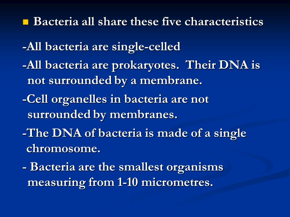 Bacteria all share these five characteristics