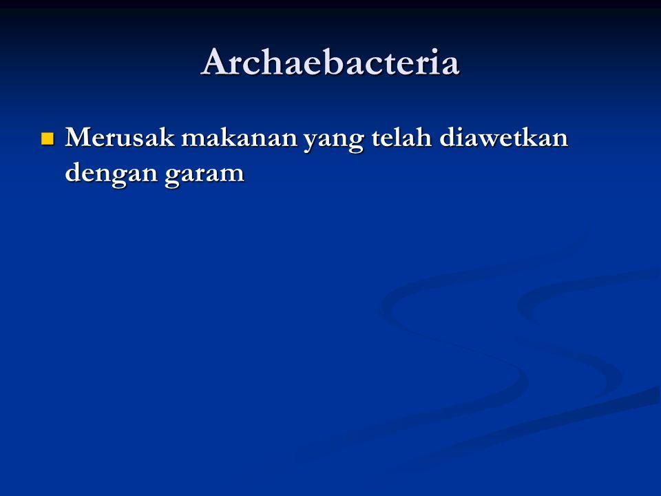 Archaebacteria Merusak makanan yang telah diawetkan dengan garam