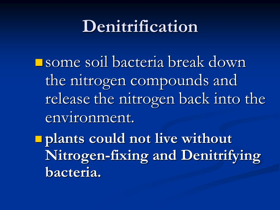 Denitrification some soil bacteria break down the nitrogen compounds and release the nitrogen back into the environment.