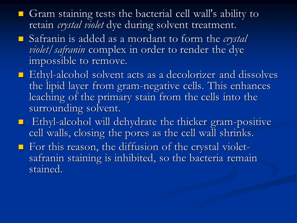 Gram staining tests the bacterial cell wall s ability to retain crystal violet dye during solvent treatment.