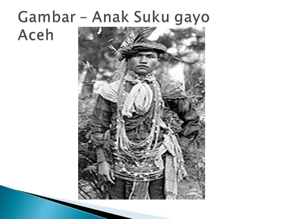 Gambar – Anak Suku gayo Aceh