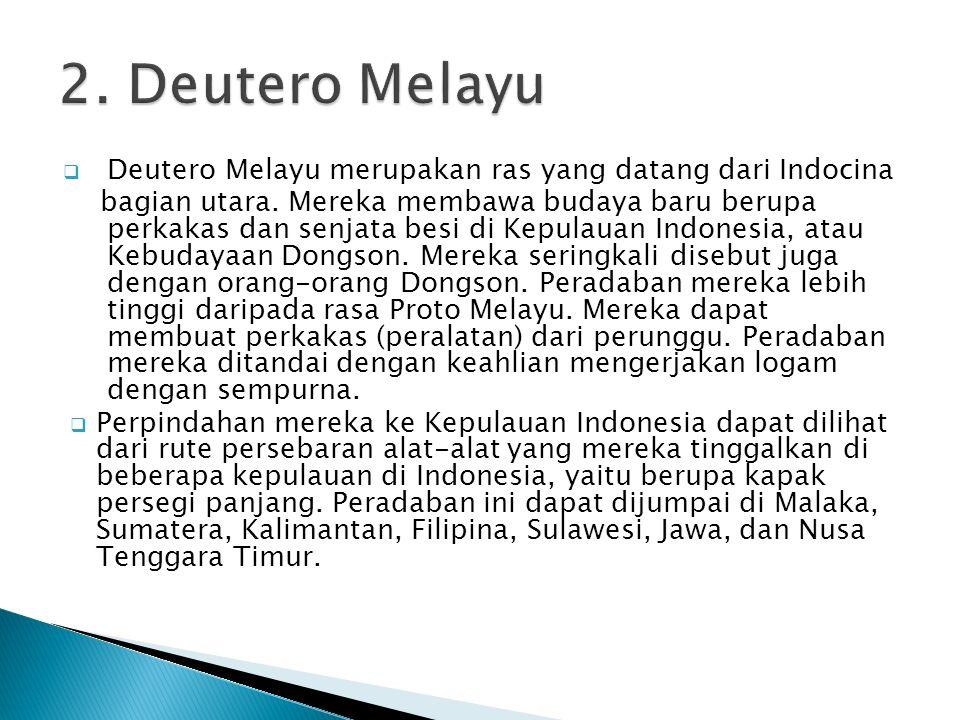 2. Deutero Melayu Deutero Melayu merupakan ras yang datang dari Indocina.