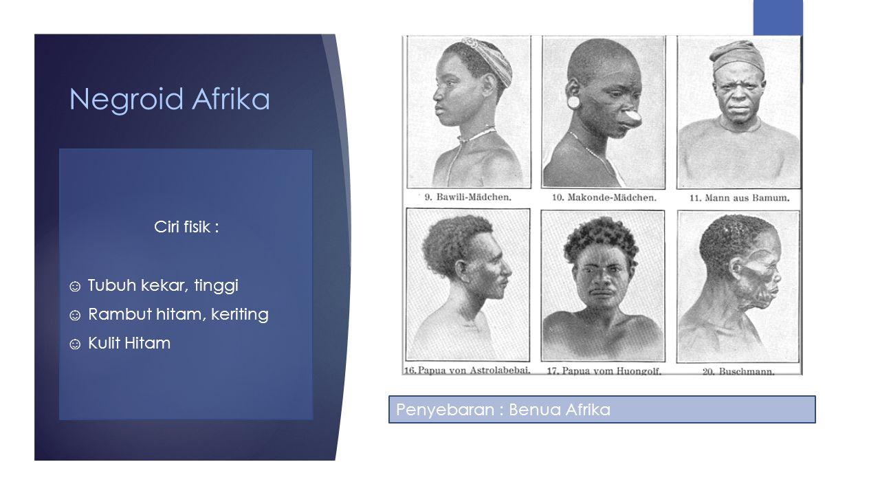 Negroid Afrika Ciri fisik : ☺ Tubuh kekar, tinggi