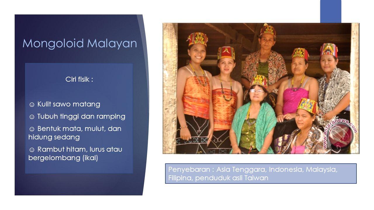 Mongoloid Malayan Ciri fisik : ☺ Kulit sawo matang