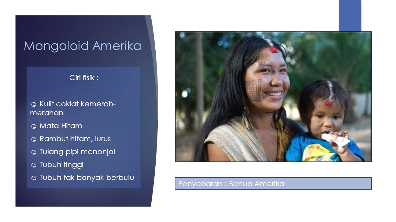 Mongoloid Amerika Ciri fisik : ☺ Kulit coklat kemerah- merahan