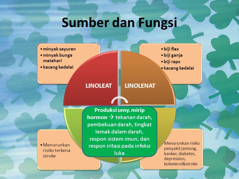 Sumber dan Fungsi LINOLEAT