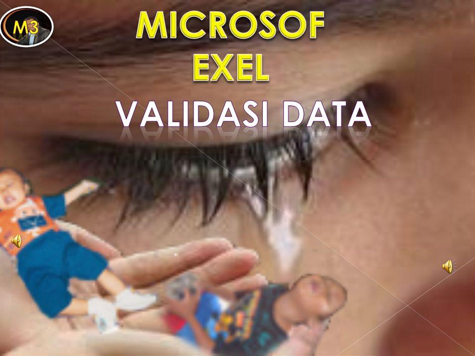 MICROSOF EXEL Validasi data