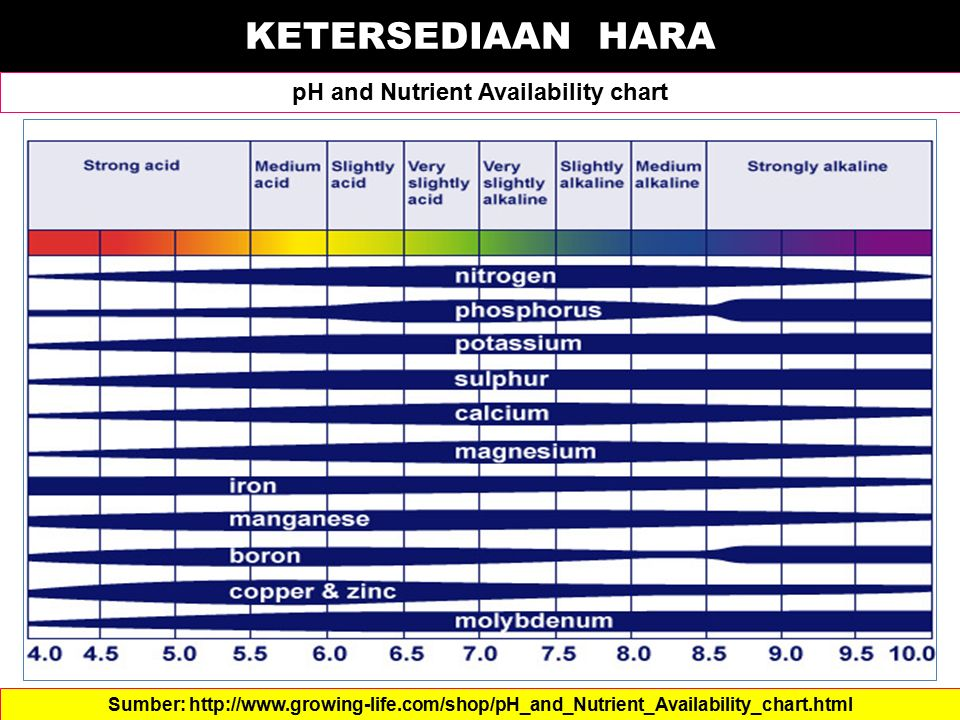 pH and Nutrient Availability chart