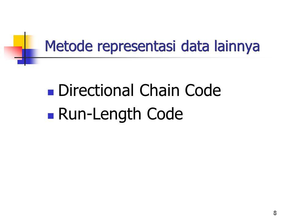 Metode representasi data lainnya