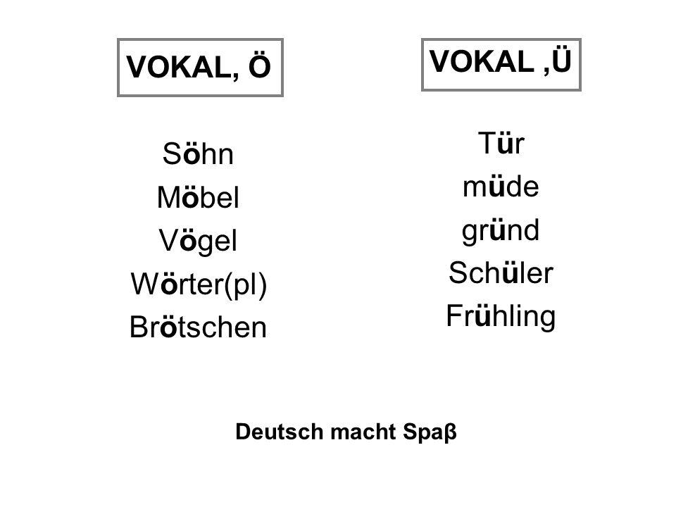 VOKAL ,Ü VOKAL, Ö Tür Söhn müde Möbel gründ Vögel Schüler Wörter(pl)
