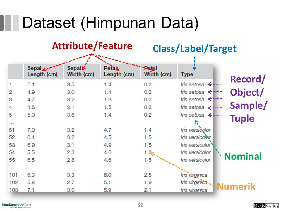 Dataset (Himpunan Data)