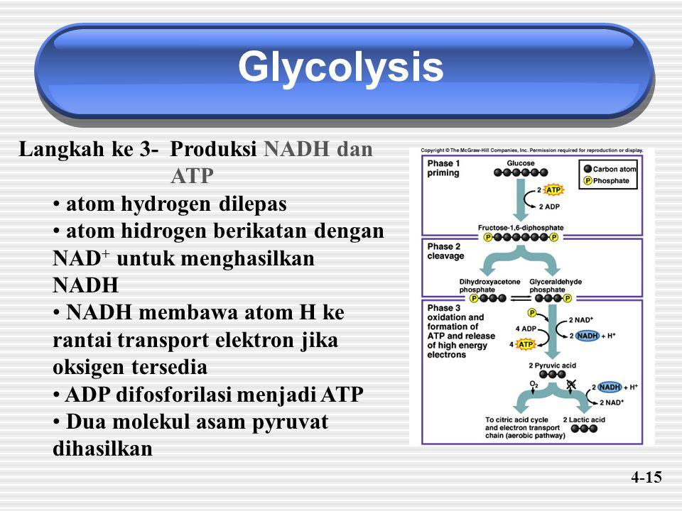 Glycolysis Langkah ke 3- Produksi NADH dan ATP atom hydrogen dilepas