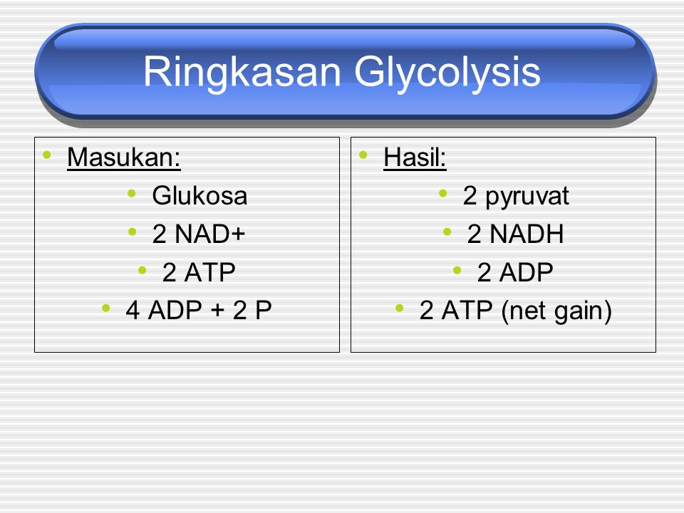Ringkasan Glycolysis Masukan: Glukosa 2 NAD+ 2 ATP 4 ADP + 2 P Hasil: