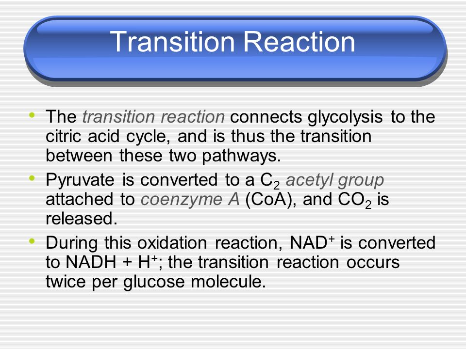 Transition Reaction The transition reaction connects glycolysis to the citric acid cycle, and is thus the transition between these two pathways.