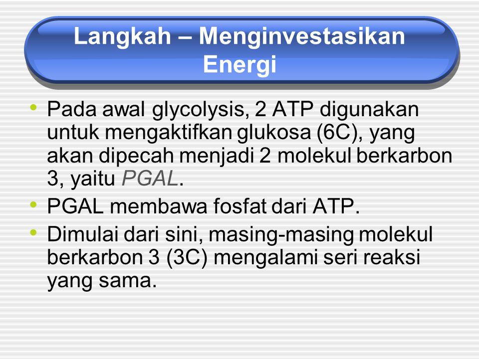 Langkah – Menginvestasikan Energi
