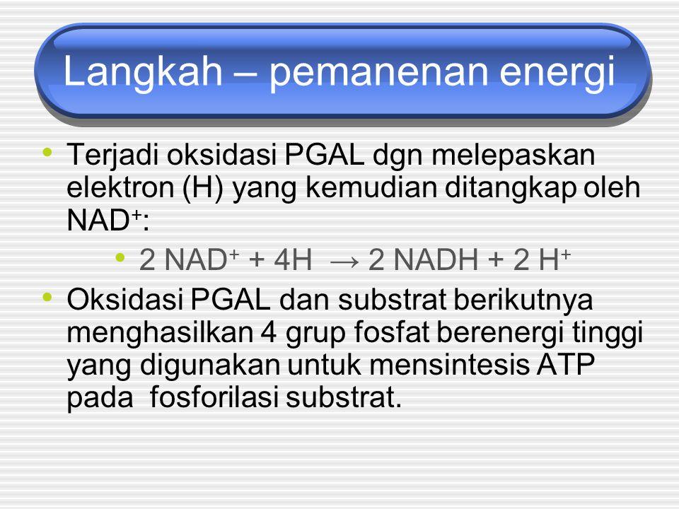Langkah – pemanenan energi