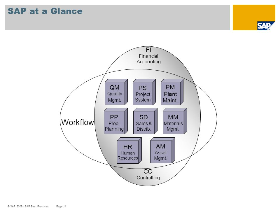 SAP at a Glance Workflow FI CO PP SD MM QM PM HR AM PS Plant Maint.