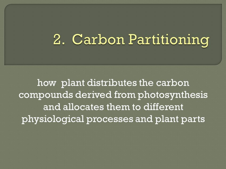2. Carbon Partitioning